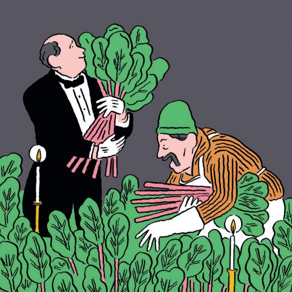rhubarb-illu